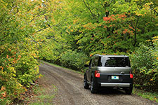 SUV driving along a tree lined road with some green and red leaves.
