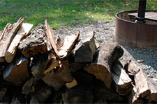 fire ring and wood pile.
