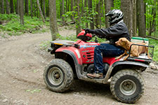 red atv with single rider and dog and cooler on the back.