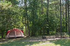 campsite with text and pinic table surrounded by trees.