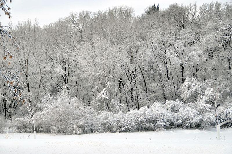 Fort Snelling State Park Minnesota Dnr