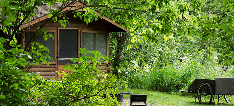 Camper cabins, group camping, and picnic facilities at Minnesota State Parks