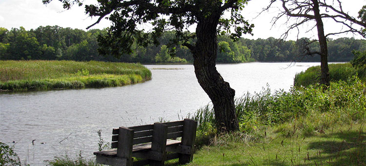 Three photos of peaceful scenery at Minnesota State Parks and Trails.