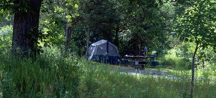 rustic campsite