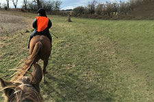 Horse riders wearing blaze orange