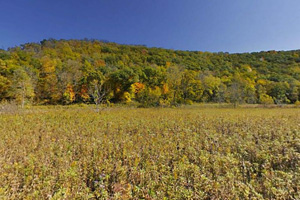 Photo of woodland bluffs and prairie in fall color.