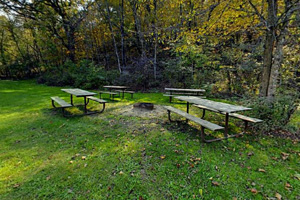 Photo of picnic tables located in a group campsite.