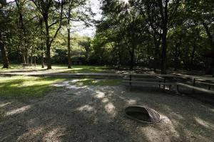 Photo of the fire rings and tables available at the south picnic area.