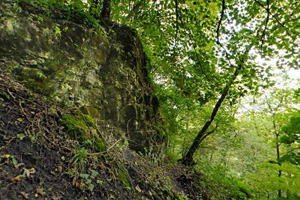 Photo of cliffs in the park that are home to glacial remnant species living in the cool microclimate of these slopes.