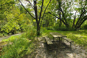 Photo of a picnic site along the shady North Branch of the Whitewater River.