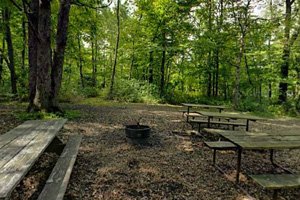 Photo of the group camp area which offers several picnic tables, a fire ring, and plenty of room for tents.