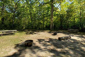 Photo of dappled shaded picnic sites within the group camp.