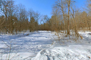 Photo of snow-covered Pike Creek near the south footbridge.