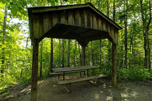Photo of a picnic table shelters at a rustic campsite.