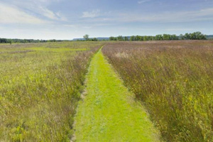 Photo of the mowed path traveling through the prairie grasses and under a big blue sky.
