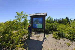 Photo of an visitor interpretive panel with information about the island and Lake of the Woods.