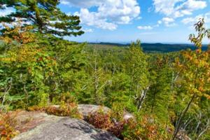 Photo of Manitou Overlook on a sunny day, of rolling hills crowded with thick forests.
