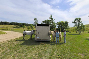 Photo of equestrian visitors using the open, grassy horse camp area.