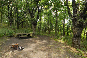 Photo of a picnic table, fire ring, at the Oak hike-in site.