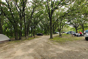Photo of the Oakridge Campground, atop an esker amongst the trees.