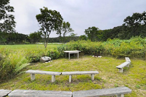 Photo of the council ring, which plays host to interpretive programs, and has bench seating, a table, and a fire ring.