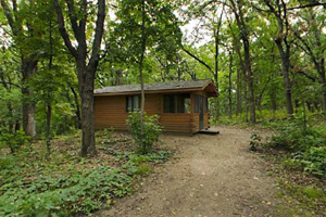 Photo of the outside of a camper cabin, nestled in the woods.