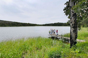 Photo of a fishing dock on the north side of Signalness (Mountain) Lake.