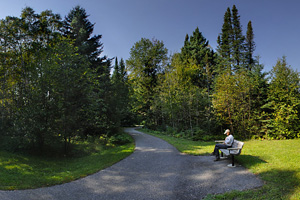 Photo of the trail to Minnesota's highest waterfall, with benches for resting along the way.