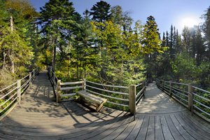 Photo of the boardwalk that takes visitors to the High Falls viewing decks.