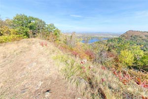 Photo of the Kings Bluff Trail at Great River Bluffs State Park, an easy 1.25 mile hiking trail from the parking lot to the Kings Bluffs Overlook.