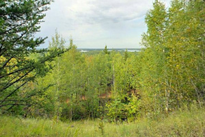 Photo of the Ely Lake Lookout, that allows a wooded view over beautiful Ely Lake.