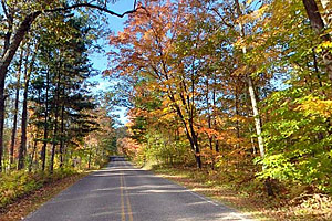 http://images.dnr.state.mn.us/destinations/state_parks/virtual_tours/itasca/thumbs/park_drive.jpg