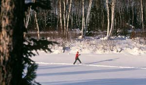 Photo of a solo cross-country skiier.