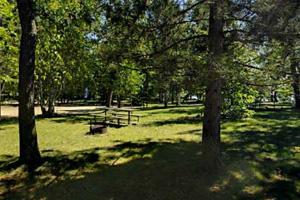 Photo of the park's shady picnic area which offers great places to grill up some brats.