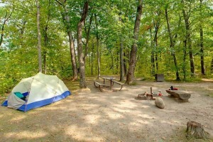 Photo of a tent, picnic table and fire ring with grill sitting in the middle of this wooded campsite beside a lake.
