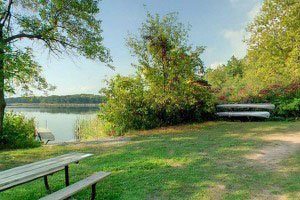 Photo of canoe access and picnic site along Maria Lake.