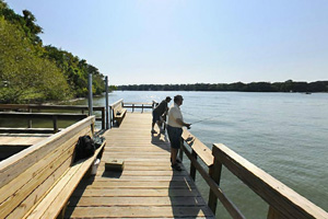 Photo of anglers fishing on the wooden fishing pier.