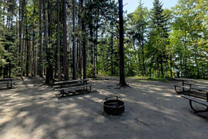 Photo of the rustic group camp picnic tables, located between the trees.