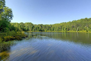 Photo of a small trout lfishing location called Pickerel Lake, which is a favorite destination for anglers and hikers.