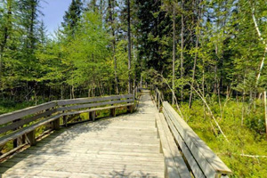 Photo of the Touch the Earth Trail, a self-guided interpretive trail.