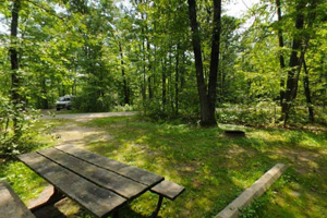 Photo of the wooded Ogechie Campground featuring a picnic table and fire ring.