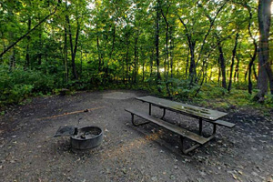 Photo of a picnic table, a fire ring for cooking, featured in one of the park's campsites.
