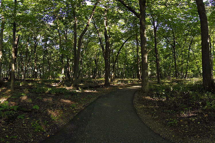Photo of the paved trail about a half mile long near Big Island Campground.