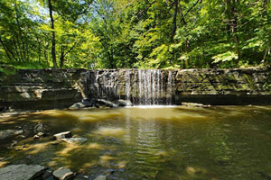 Photo of a 20 foot limestone waterfall hidden in the woods.