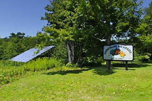 Photo of the solar panel which works to offset the energy used in the park's visitor center.