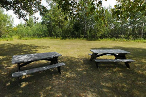 Photo of picnic tables located in the rustic group camp area.