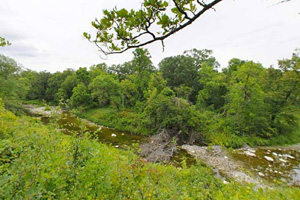 Photo of the Agassiz Self-Guided Trail with the Middle River running below it.