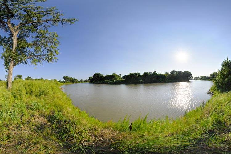 Photo of the shore of the Red River, which serves a migratory route for numerous species of birds.