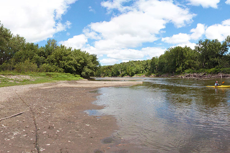 Photo of the shoreline along the Minnesota River.