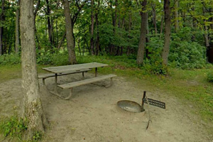 Photo of a walk-in campsite that offers a picnic table, fire ring, and nearby vault toilet.